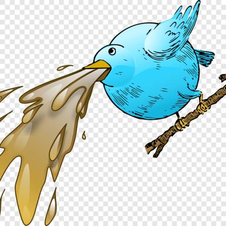 Evcil Kuşlarda Kusma ve Geri Çıkarma